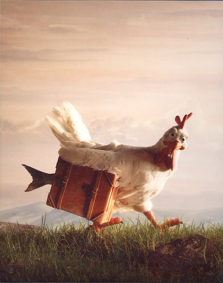 qantas-chicken